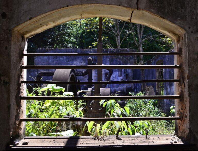 Vista das ruínas da casa de máquinas Fonte: Acervo MM Gerdau. Leonardo Miranda, 2021.